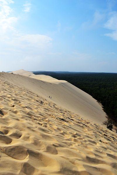 sentier sur la dune du pilat